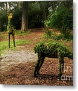 Topiaries Metal Print