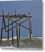Topsail Ocean City Pelicans Metal Print