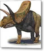 Torosaurus Latus, A Prehistoric Era Metal Print