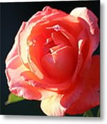 Touch Of Fragrance. Metal Print