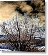 Touch Of Frost Metal Print