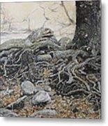 Tough Tree Metal Print