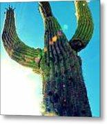 Towering Saguaro Metal Print