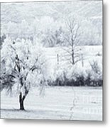 Tracks In The Frost Metal Print