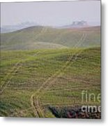 Tracks On The Field Metal Print