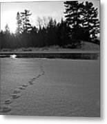 Tracks To The Water Metal Print