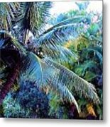 Trade Winds Metal Print