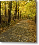 Trail Scene Autumn Abstract 1 Metal Print