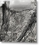 Trapped Metal Print by JC Findley
