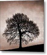 Tree Against A Stormy Sky Metal Print