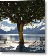 Tree And Benches Metal Print