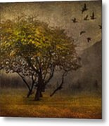 Tree And Birds Metal Print by Svetlana Sewell