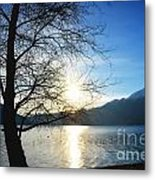 Tree And Lake Metal Print
