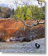 Tree And Tire Swing In Winter Metal Print