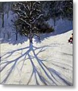 Tree And Two Tobogganers Metal Print by Andrew Macara