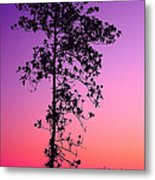 Tree At Twilight Metal Print