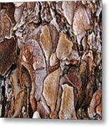 Tree Bark Close Up Metal Print