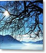Tree Branches And Sun Metal Print