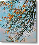 Tree Branches In Autumn Metal Print