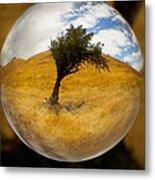 Tree In A Field Through A Glass Eye Metal Print