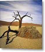 Tree In Desert Metal Print