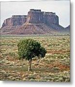 Tree In Monument Valley Metal Print