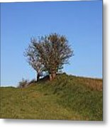 Tree In The Country Metal Print