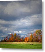 Tree Line On Sunset Hill In New Hampshire Metal Print