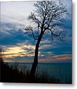 Tree Of Peace Metal Print