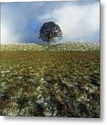 Tree On A Landscape, Giants Ring Metal Print