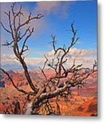 Tree Over Grand Canyon Metal Print