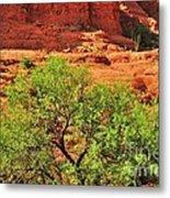 Tree Set Against Red Cliffs Metal Print