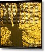 Tree Shadow Metal Print