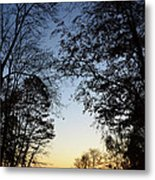 Tree Silhouette At Sunset 1 Metal Print by Bruno Santoro