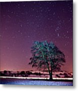 Tree Snow And Stars Metal Print by Paul McGee