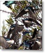 Tree Swallow - All Swallowed Up Metal Print