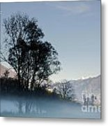 Tree With Fog On Field And Metal Print