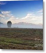 Tree With Fog On The Field Metal Print