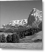 Treeline Across Alpi Di Siusi In The Dolomites Metal Print