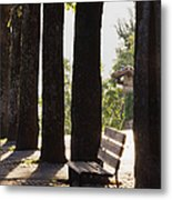 Trees And Bench Metal Print