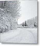 Trees And Dirt Path In Snowy Landscape Metal Print