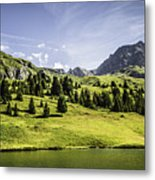 Trees And Lake In Grassy Rural Landscape Metal Print
