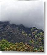 Trees And Leaves At The Base Of A Mountain With Clouds And Mist Covering The Top Metal Print