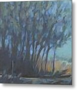 Trees Full Of Birds Metal Print