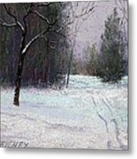 Trees In A Winter Fog Metal Print