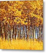 Trees In Autumn Metal Print