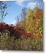 Trees In Color Metal Print