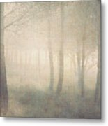 Trees In Mist On Linen Metal Print by Paul Grand Image
