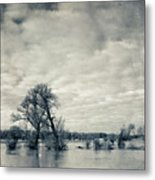 Trees In River Rhine Metal Print