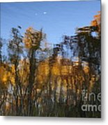 Trees In The Water Metal Print